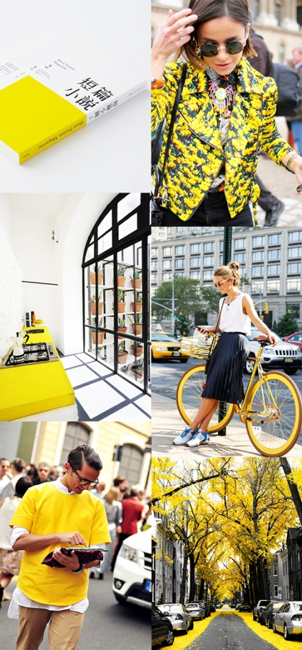 Yellow-fashion-interior-art-photography-man-woman-flower-graphicdesign-bike
