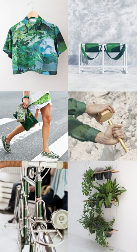 Green-plants-bike-fashion-interior-grey