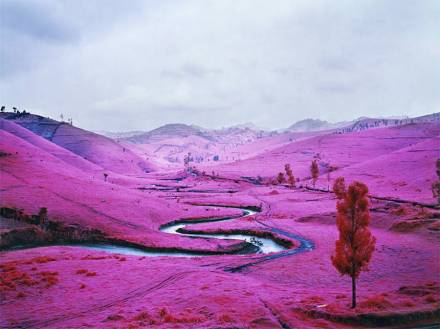 pink-congo-of-africa-by-richard-mosse-1