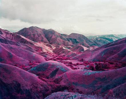 pink-congo-of-africa-by-richard-mosse-2