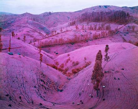 pink-congo-of-africa-by-richard-mosse-3